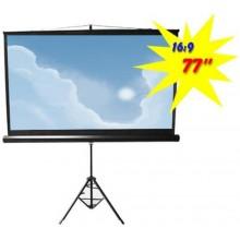 Экран для проектора Logan PRTC2