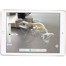 Планшет Apple iPad (2018) 32Gb Wi-Fi Silver (MR7G2)